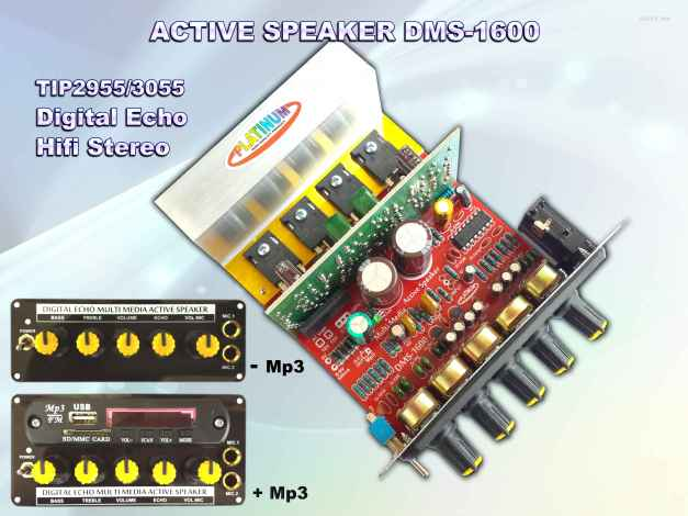 Aktive DMS-1600