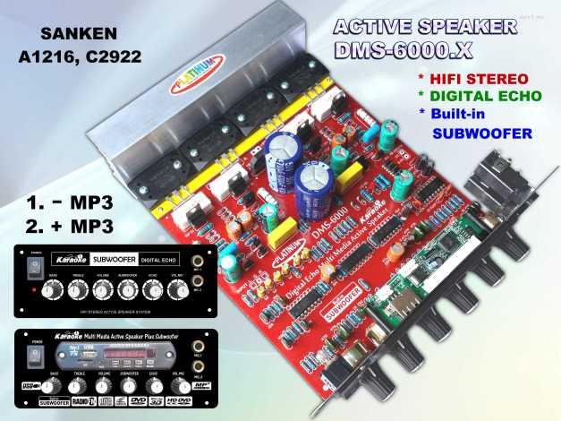 Aktive DMS-6000