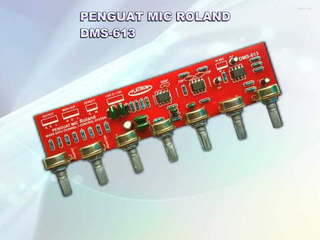 PENGUAT MIC ROLAND DMS-613